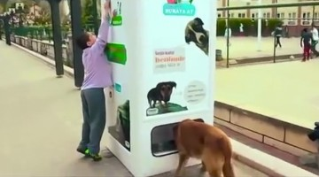 This Brilliant Vending Machine Gives Food To Stray Dogs In Exchange For Plastic Bottles