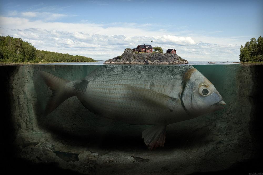 Surreal Images & Photoshop manipulations - 9