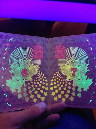 Old Canadian Passport Under Black Light