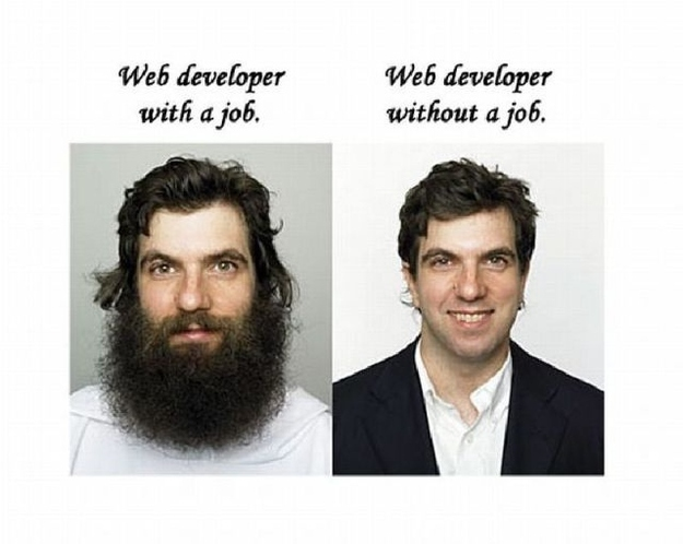 Web Developer - with and without a job