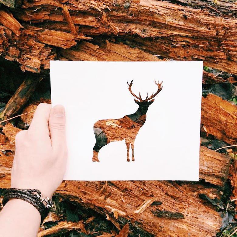 Paper cut-outs of animals filled with beautiful backdrops of nature - 10