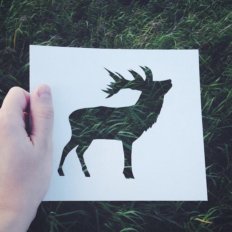 Paper cut-outs of animals filled with beautiful backdrops of nature - 15