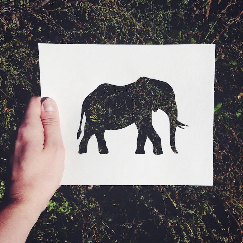 Paper cut-outs of animals filled with beautiful backdrops of nature - 16
