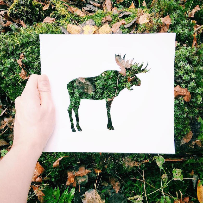 Paper cut-outs of animals filled with beautiful backdrops of nature - 17