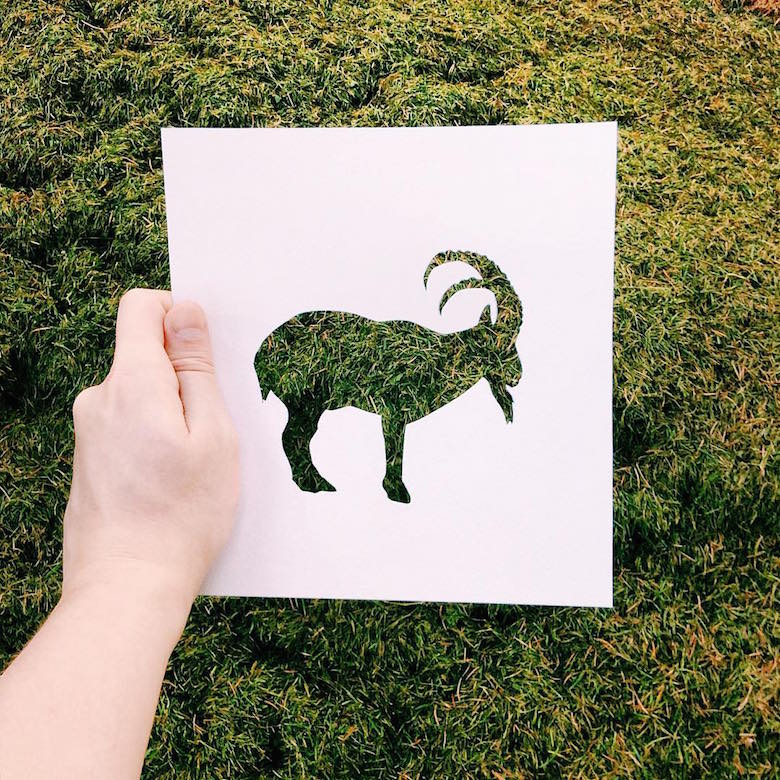 Paper cut-outs of animals filled with beautiful backdrops of nature - 18