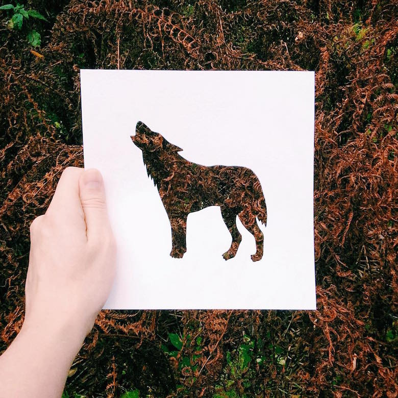 Paper cut-outs of animals filled with beautiful backdrops of nature - 21