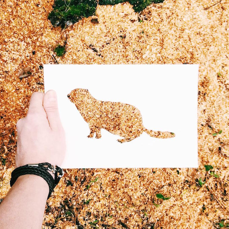 Paper cut-outs of animals filled with beautiful backdrops of nature - 25