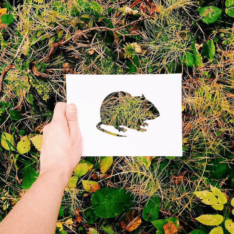 Paper Cut Outs Of Animals Filled With Beautiful Backdrops Nature
