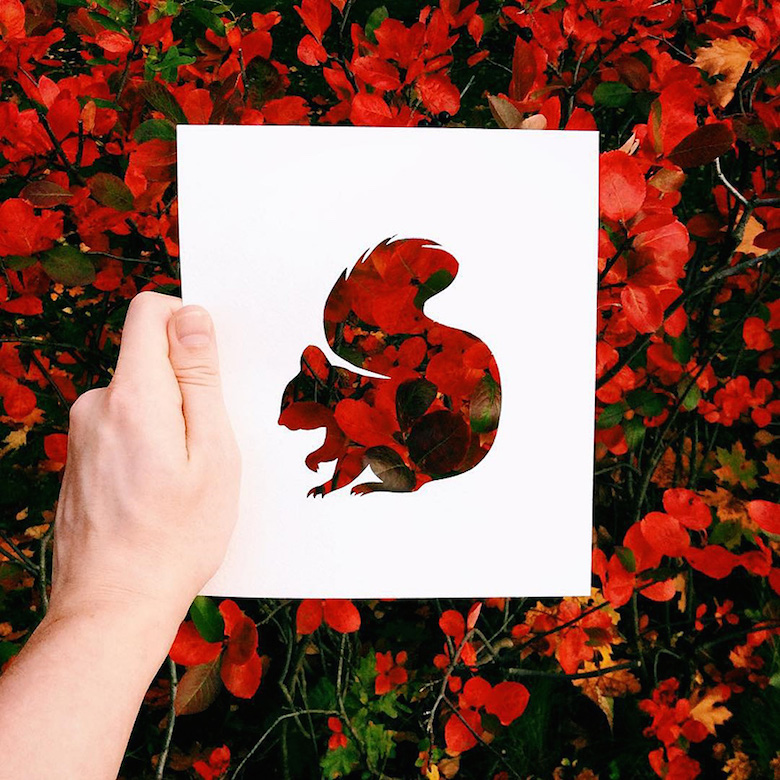 Paper cut-outs of animals filled with beautiful backdrops of nature - 6