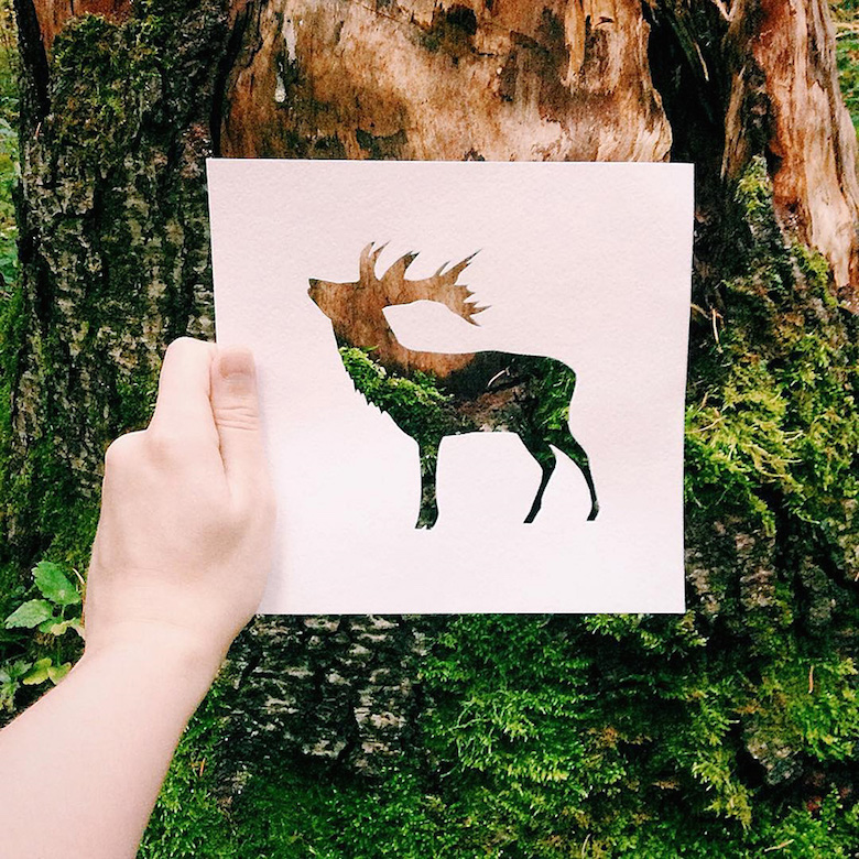 Paper cut-outs of animals filled with beautiful backdrops of nature - 8