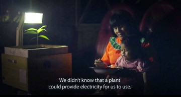 UTEC And Agency FCB Create Plant-Powered Lamps For Peru Villages With No Electricity