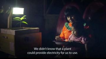 plant-lamp-utec-peru