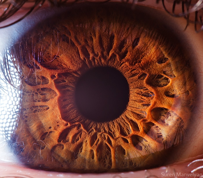 Extreme Close Ups Of Human Eye Macro Photography