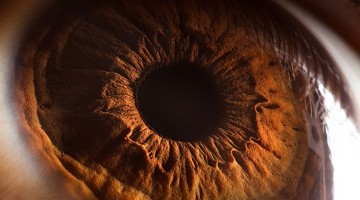 human-eye-extreme-close-ups-macro-photography
