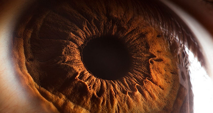 Your Beautiful Eyes' - Amazing Close-Up Photos Of Human Eyes By ...