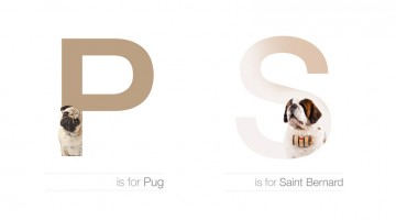 Designer Creates Adorable Alphabetical Series Of Dog Breeds From A To Z