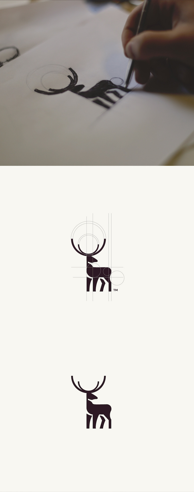 colourful-animaux-logos-or-ratio-2