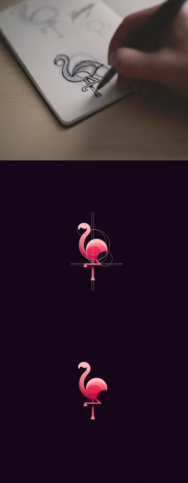 colourful-animaux-logos-or-ratio-5