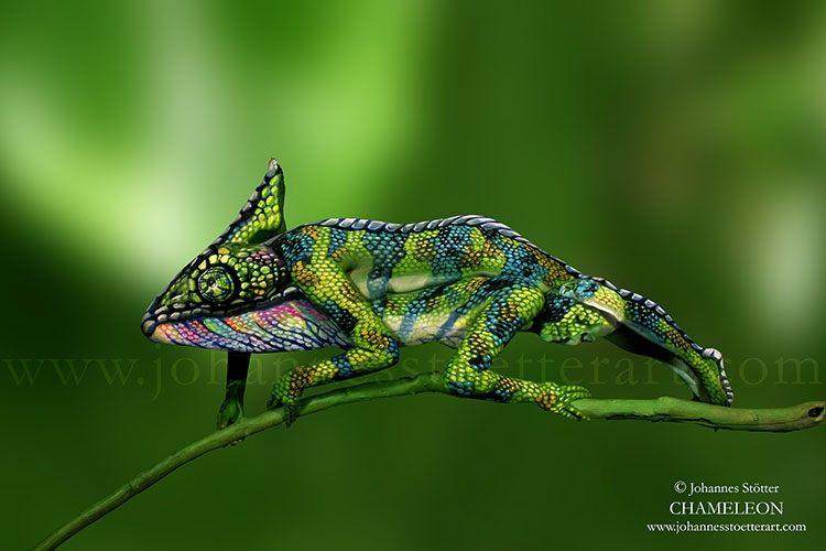 Most Craziest Body Paintings Of Animals And Nature