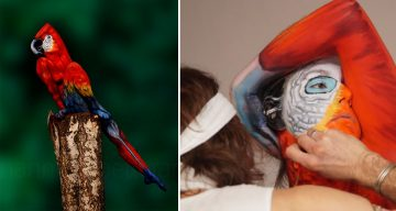 27 Amazing Body Art Illusions That Will Make You Go Wow