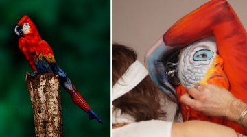 body-art-paintings-nature-inspired-illusions