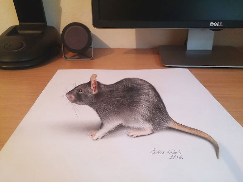 Realistic drawings that look like 3D objects / Optical illusion art - 13