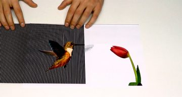 Paper Drawings Come To Life In These Amazing Illusions That Make You Go Wow