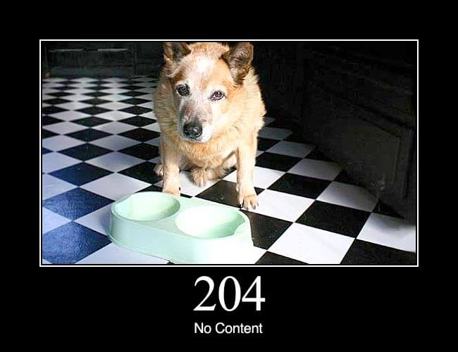 204 No Content: The server successfully processed the request, but is not returning any content.