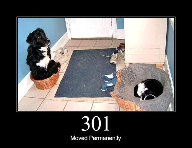 301 Moved Permanently: This and all future requests should be directed to the given URI.