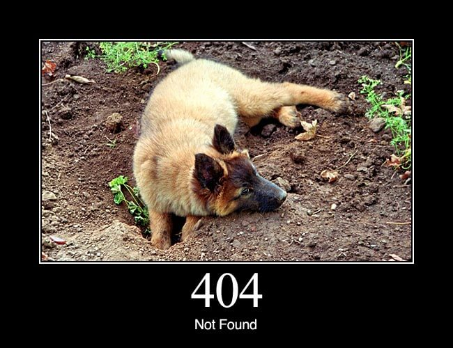 404 Not Found: The requested resource could not be found but may be available again in the future. Subsequent requests by the client are permissible.