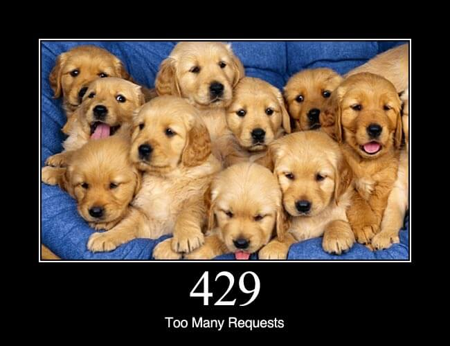 429 Too Many Requests: The user has sent too many requests in a given amount of time. Intended for use with rate limiting schemes. Proposed in an Internet-Draft.