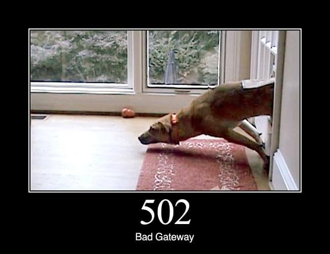 502 Bad Gateway: The server was acting as a gateway or proxy and received an invalid response from the upstream server.