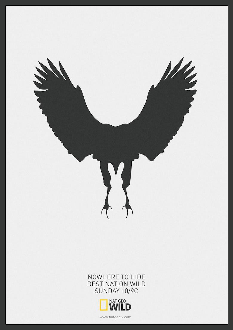 National Geographic: Predator Vs Prey (2)