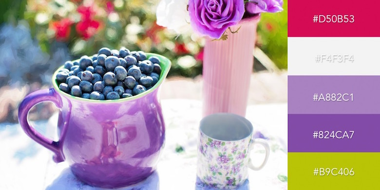 Beautiful color combinations, schemes and palettes - Summer Blueberries