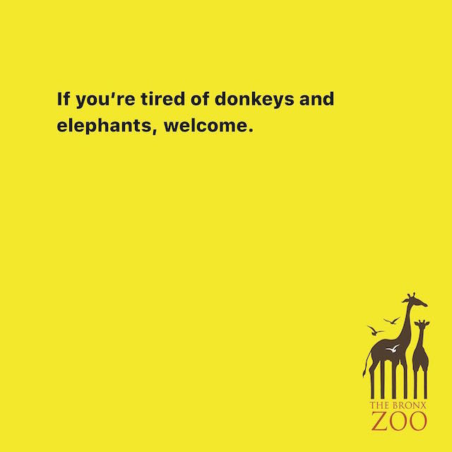 Creative Print Ads, 365 Day Copywriting Challenge - The Bronx Zoo