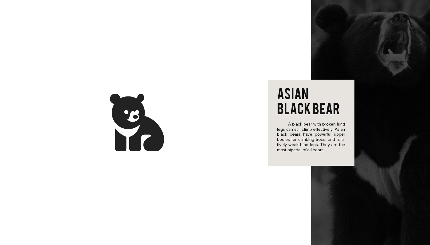 Endangered Animal Logos - 1