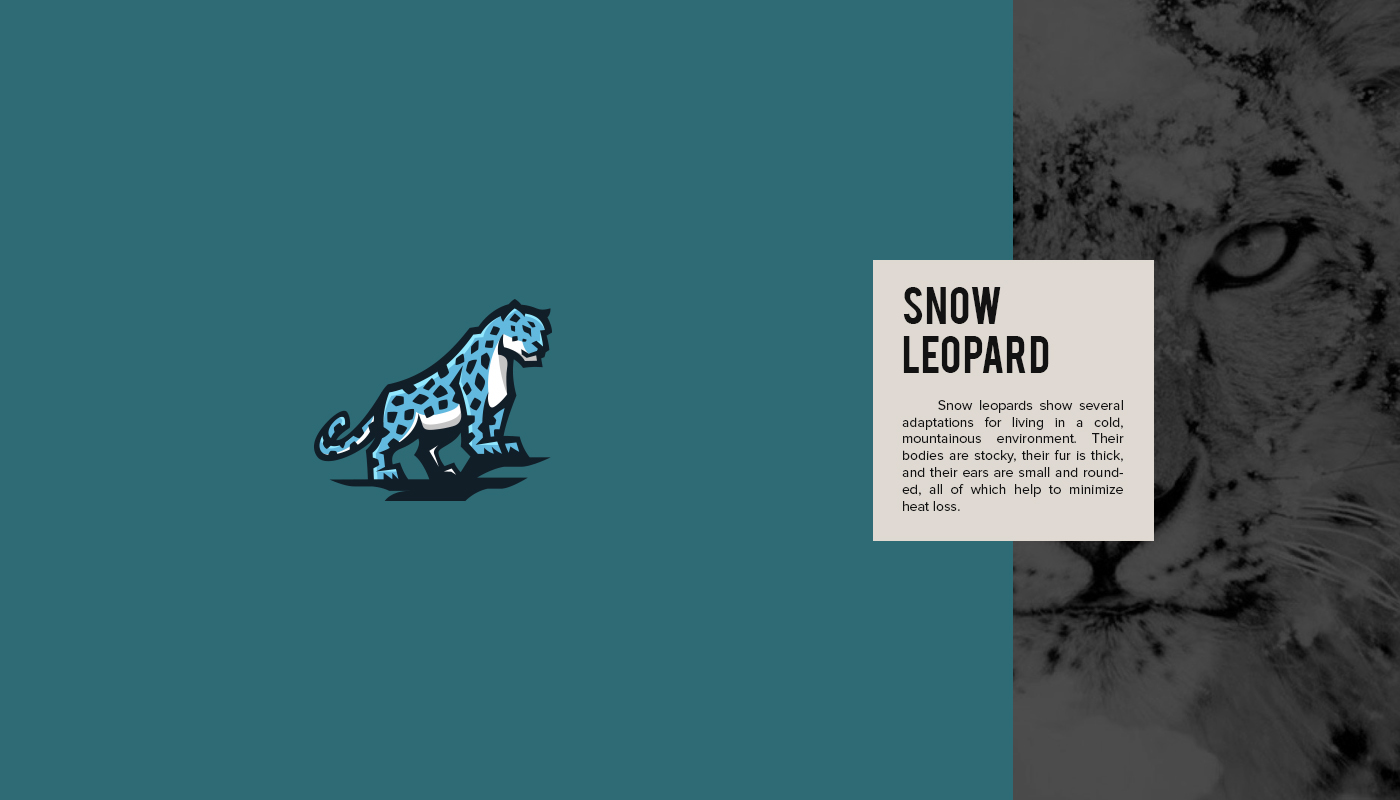 Endangered Animal Logos - 10