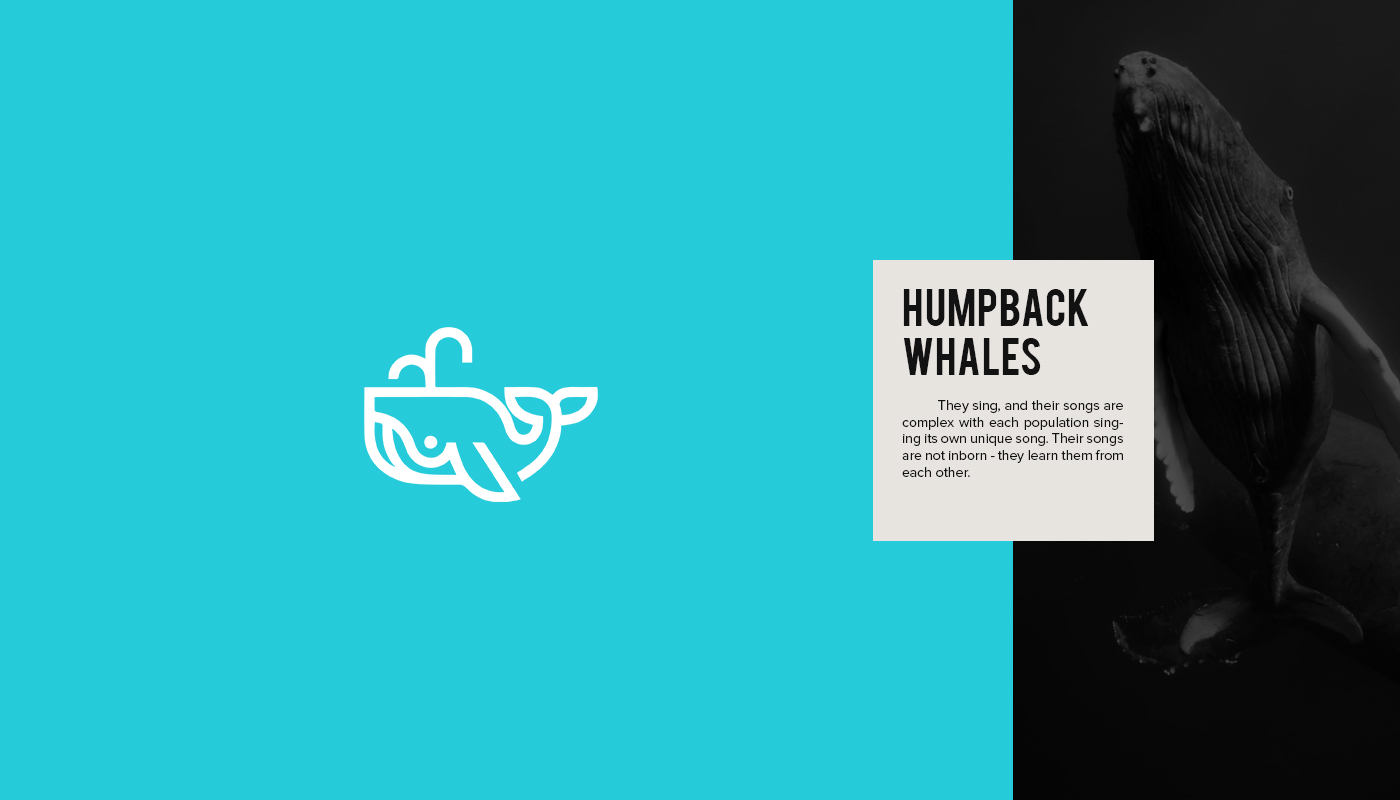 Endangered Animal Logos - 15