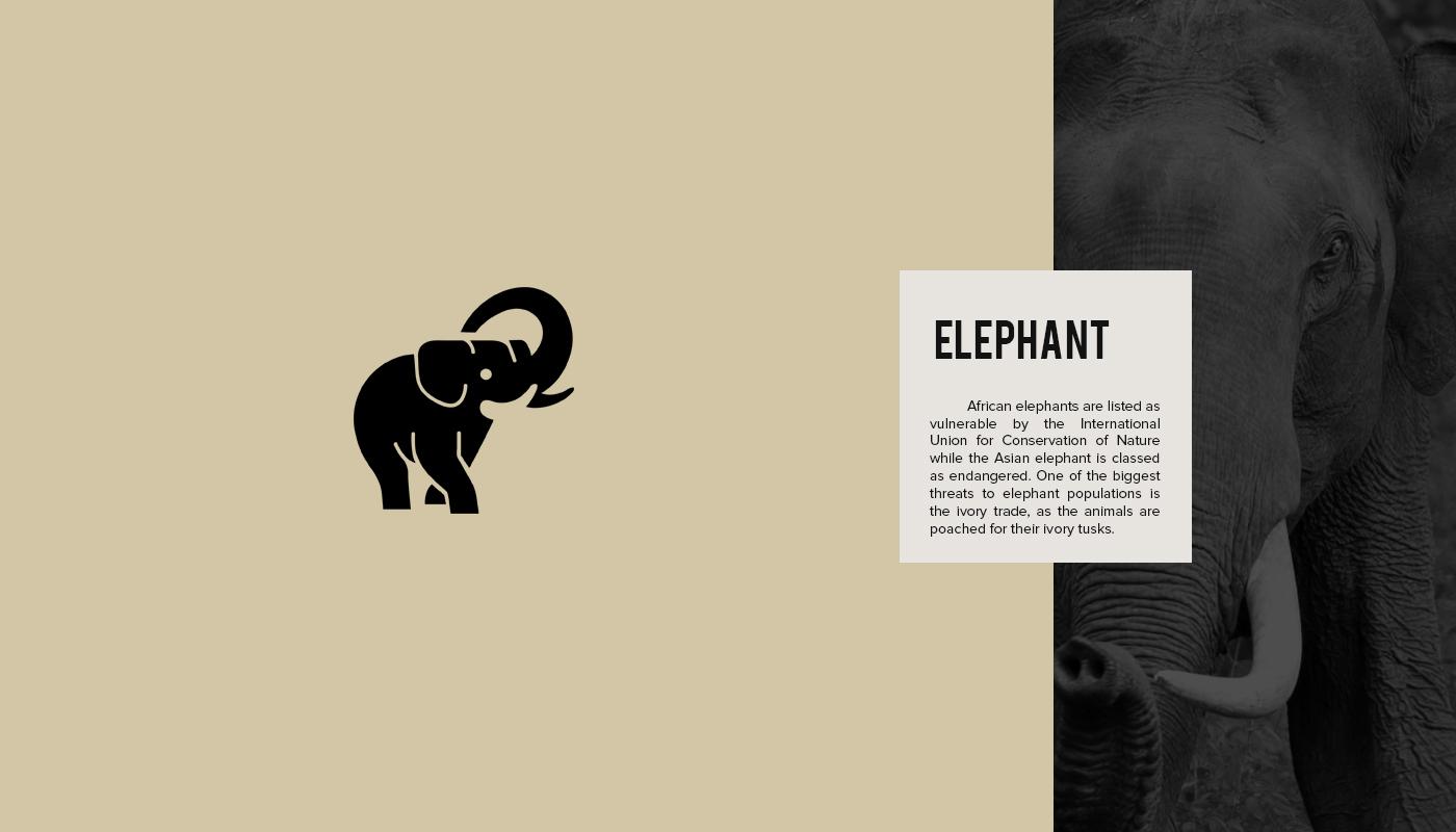 Endangered Animal Logos - 9