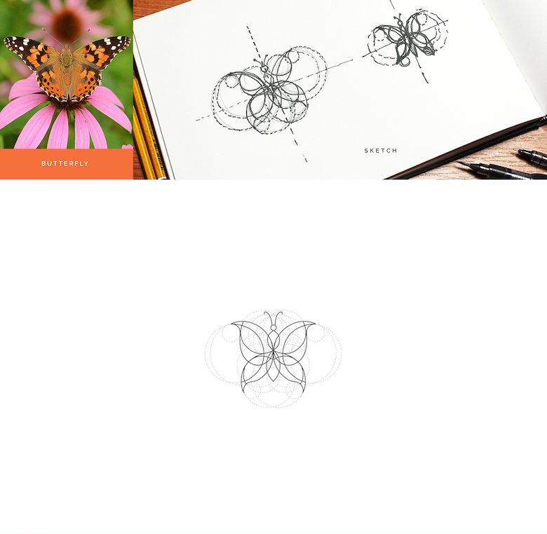 Color animal logos based on circular geometry - Butterfly (1)