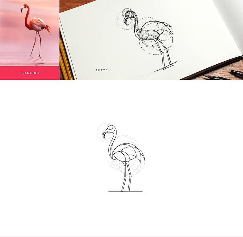 Color animal logos based on circular geometry - Flamingo (1)