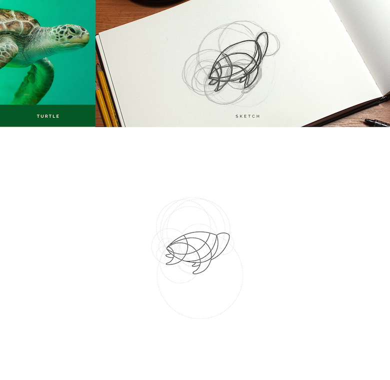 Color animal logos based on circular geometry - Turtle (1)