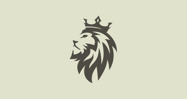 Creative Lion Logo Design - 11