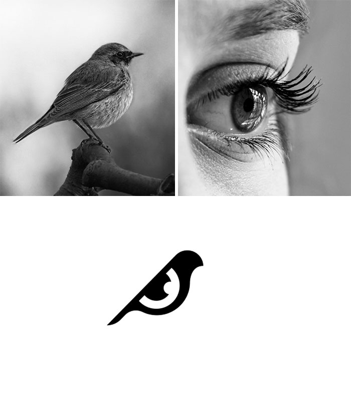 Brand logos made by combining two two objects - Bird Vision