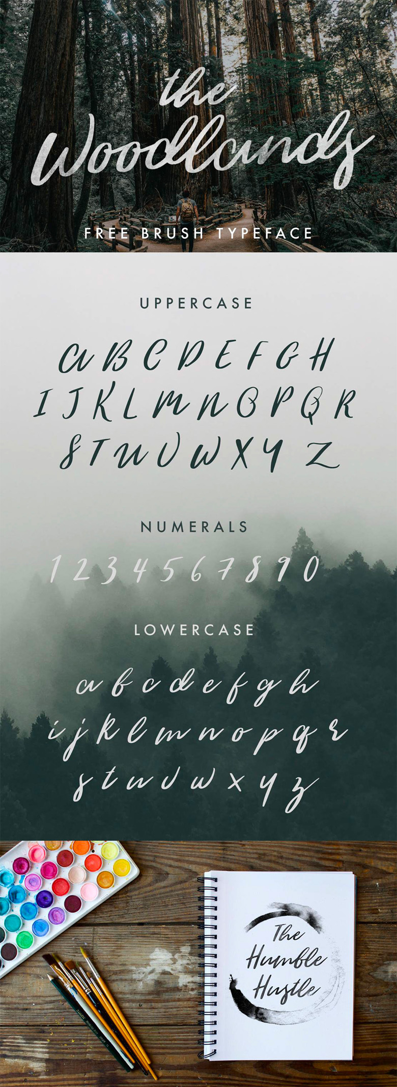 Beautiful free fonts for designers - The Woodlands