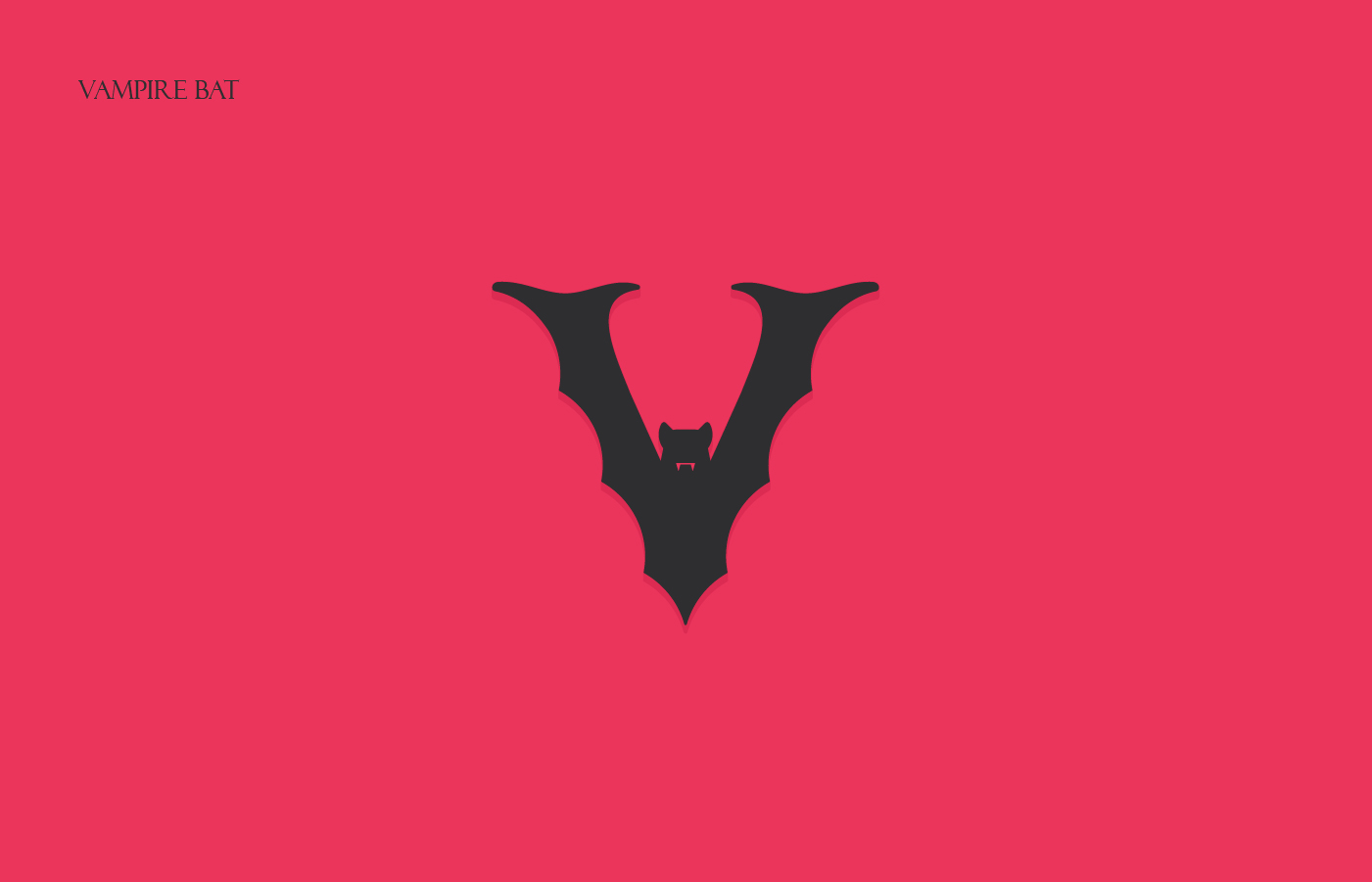 Animals Alphabet - Vampire Bat