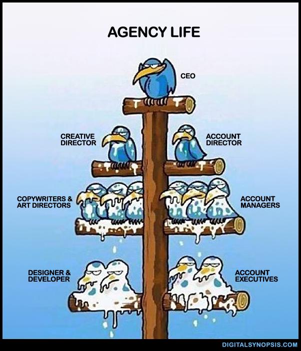 Agency Life - Bird Shit meme