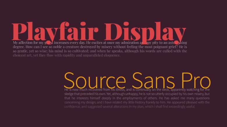 Playfair Display / Source Sans Pro