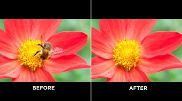 Photoshop's New, More Powerful 'Content-Aware Fill' Can Realistically Remove Any Object From Your Photos