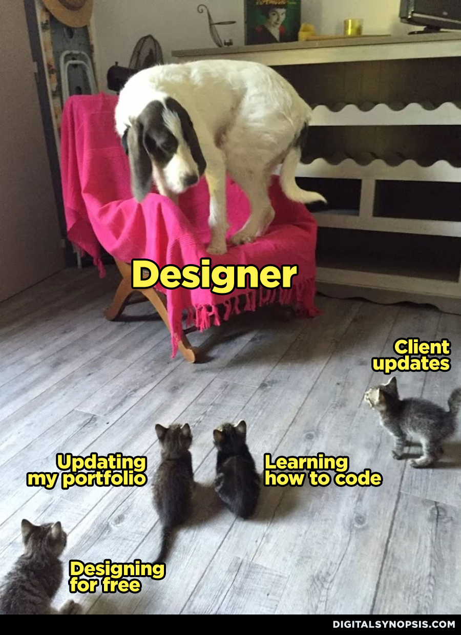 Designer Dog vs. Kittens